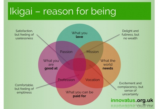 Ikigai reason for being